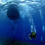 Scuba Diving in Little Cayman