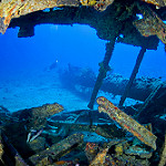 Scuba Diving in the USVI