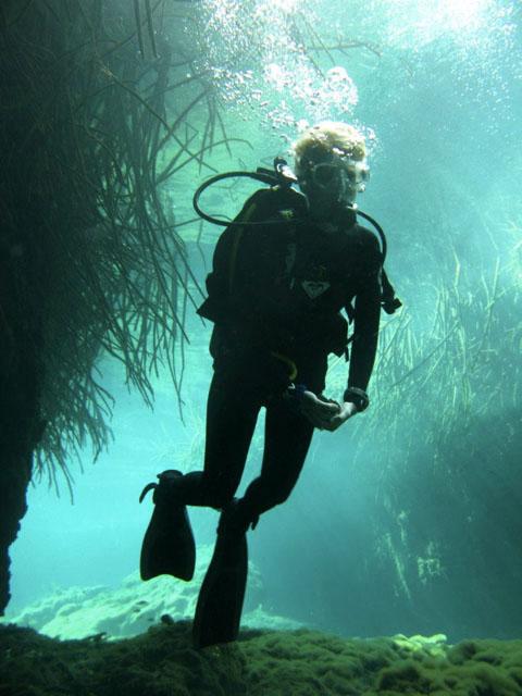 Scuba Diving Casa Cenote Mangrove - Buceo